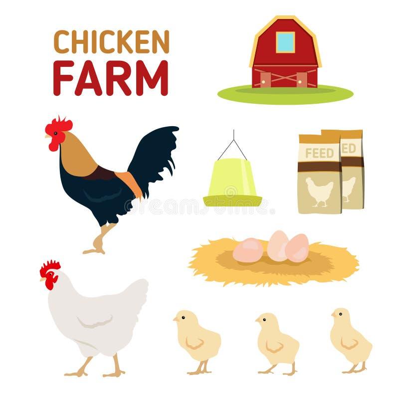 Alimentazione dell'uovo del gallo della gallina del pollo ed isolato dell'azienda agricola su fondo bianco illustrazione di stock