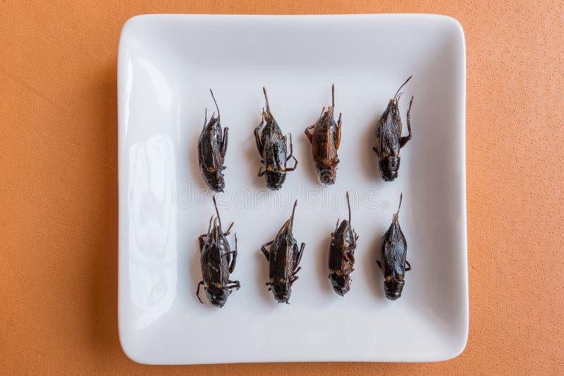 Alimenti dell'insetto in bigné della banana immagine stock
