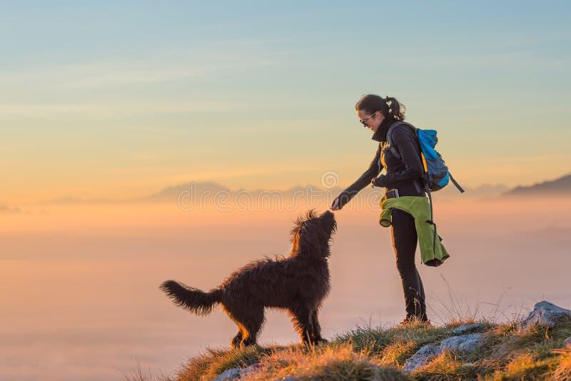 Alimento al cane di una ragazza durante l'escursione nelle montagne fotografia stock