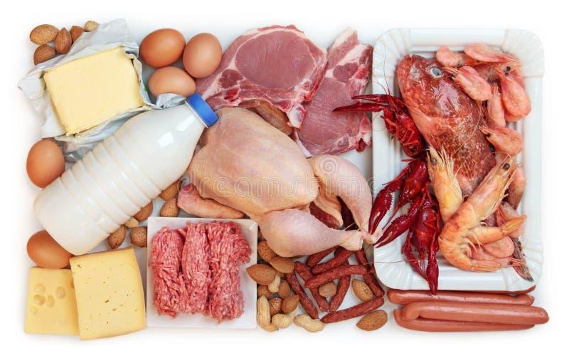 Alimento alto in proteina animale fotografia stock