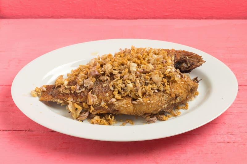 alimento Asia-asiatico Alimento tailandese - frittura #6 di Stir pesce fritto del fiume di tilapia di Nilo con il g immagine stock libera da diritti