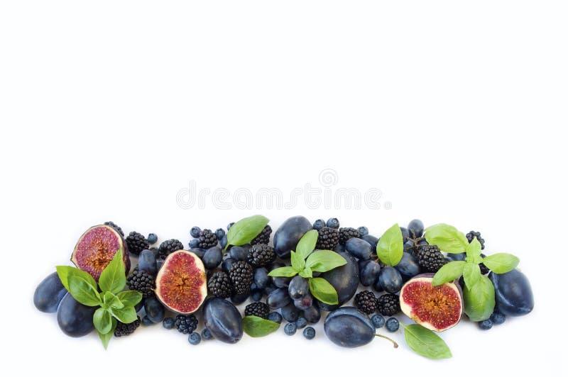 Alimento azul e roxo Grupo de frutos frescos e de bagas com ` s da manjericão em um fundo branco ilustração do vetor