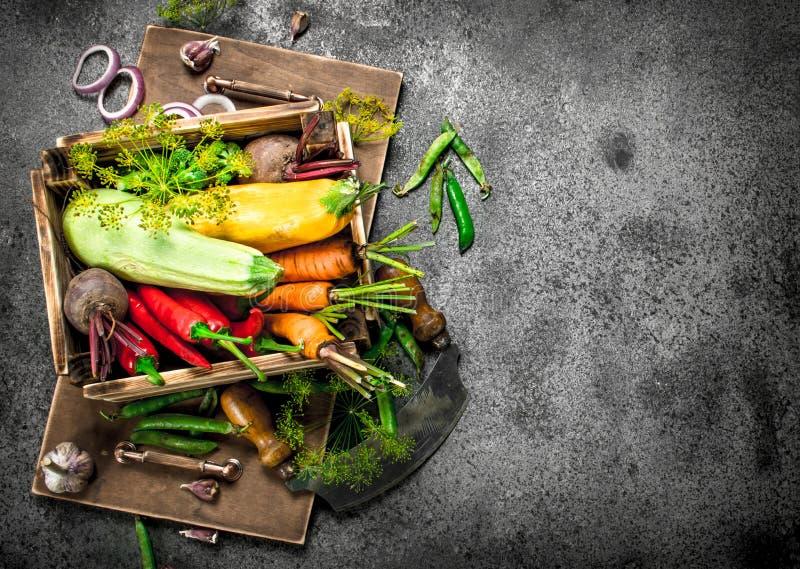 Alimento biológico Colheita fresca dos vegetais em uma caixa velha imagens de stock