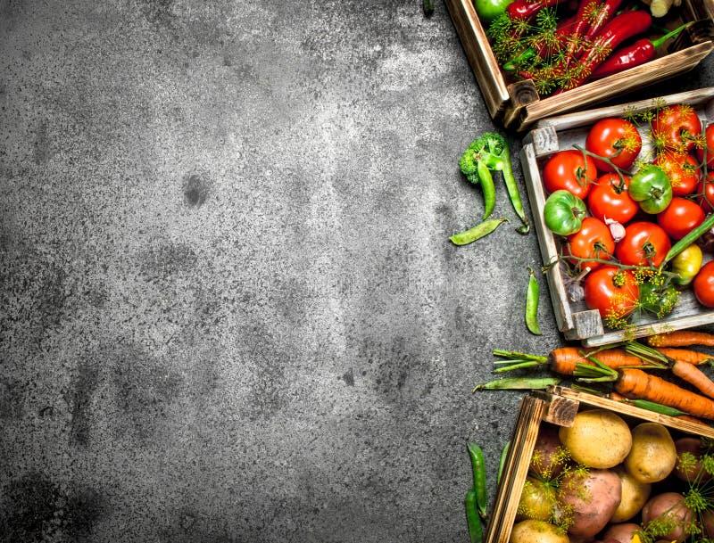 Alimento biológico Colheita fresca dos vegetais em umas caixas imagens de stock