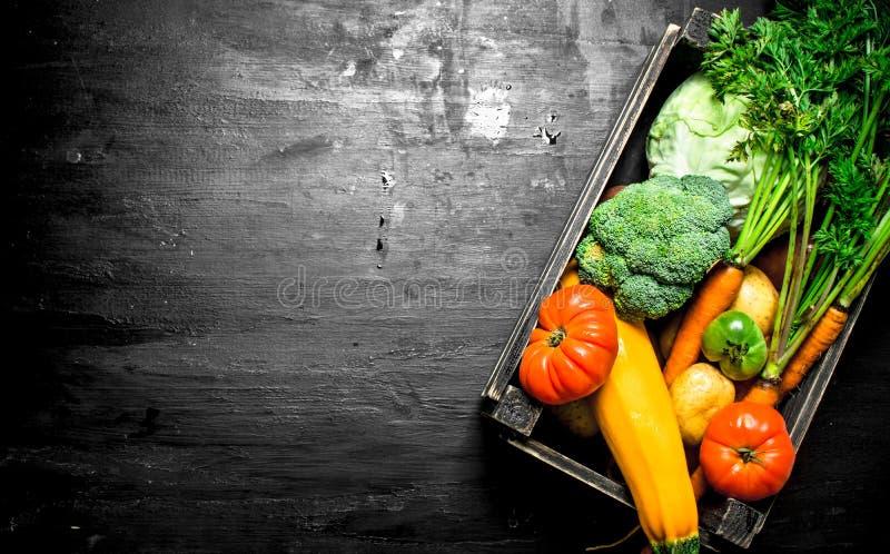 Alimento biológico Legumes frescos em uma caixa velha fotos de stock royalty free