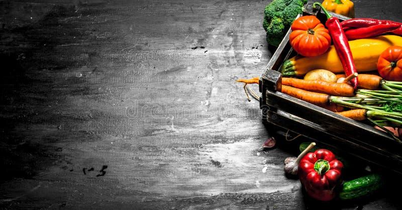 Alimento biológico Legumes frescos em uma caixa velha fotografia de stock