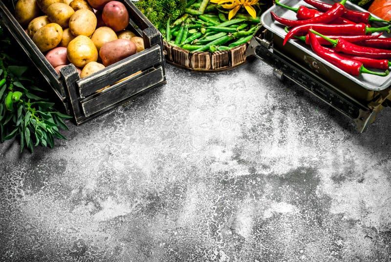 Alimento biológico Legumes frescos em uma pimenta da caixa e de pimentão em escalas foto de stock