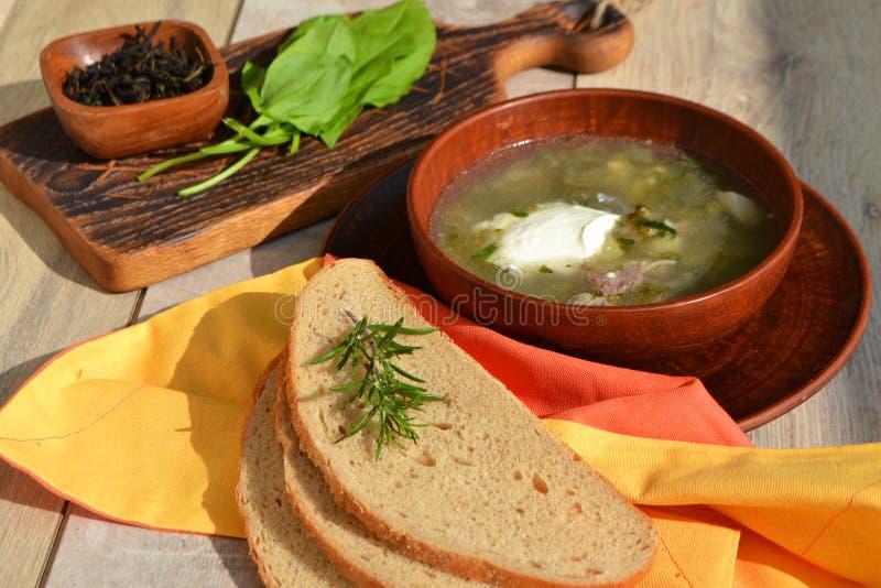 Alimento biológico: uma placa da mola Chunky Sorrel Soup do verão fotografia de stock royalty free