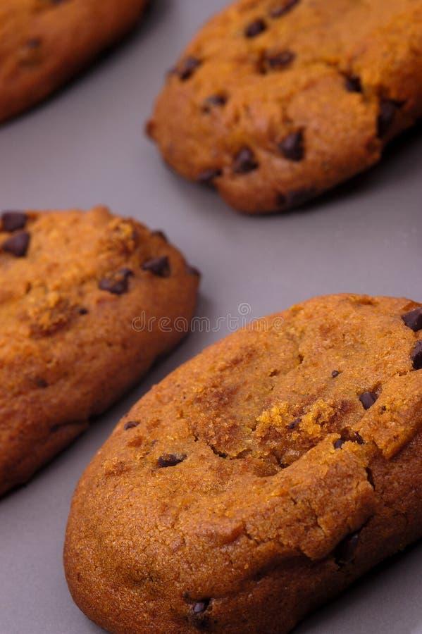 Alimento - biscotti caldi freschi fotografie stock libere da diritti