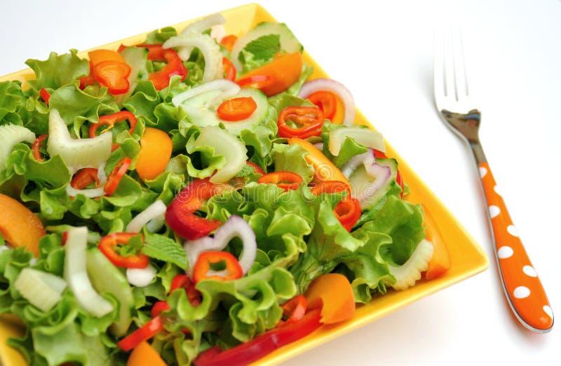 Alimento da desintoxicação com vegetais crus em uma placa imagem de stock