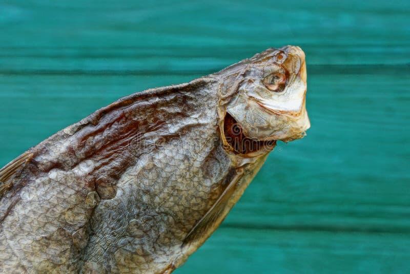 Alimento da ram seca salgada dos peixes em um fundo verde fotografia de stock