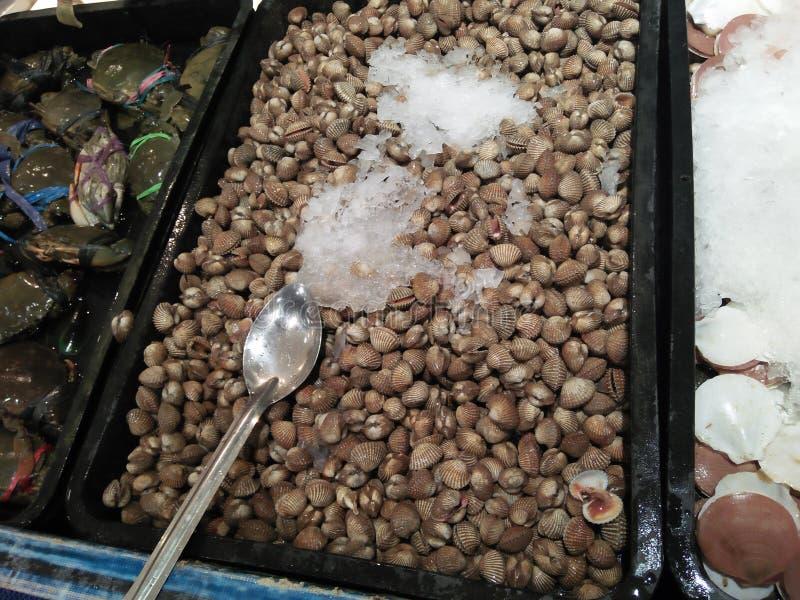 Alimento dal mare che è conservato con il liquido refrigerante fotografia stock