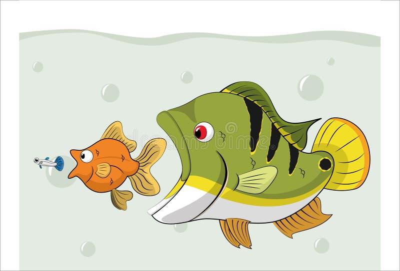 Alimento de cadena de los pescados ilustración del vector