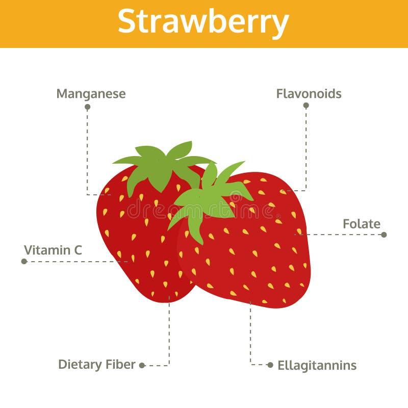 Alimento de la fresa de hechos y de subsidios por enfermedad, gráfico de la información ilustración del vector