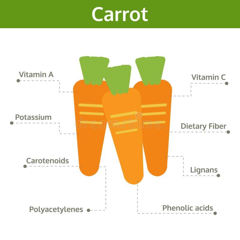 Alimento de la zanahoria de hechos y de subsidios por enfermedad, gráfico de la información libre illustration