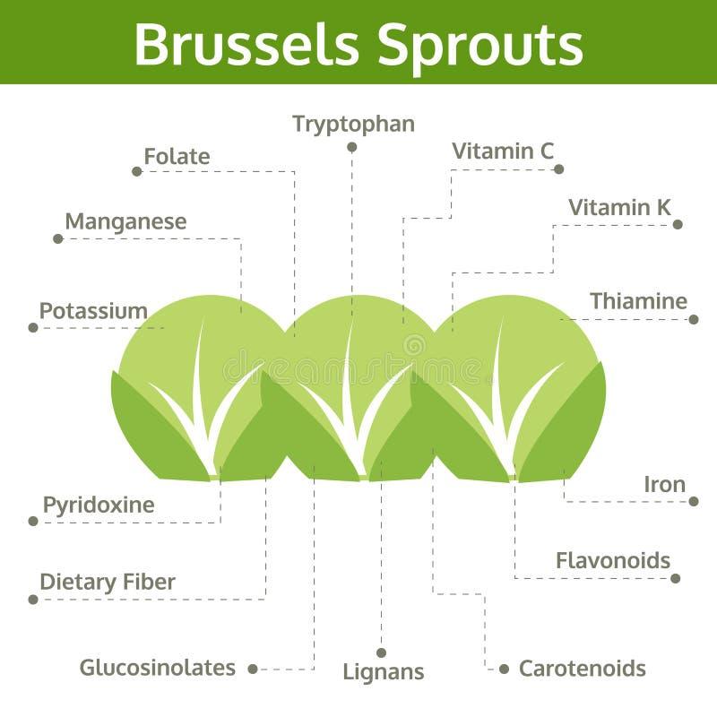 Alimento de las coles de Bruselas de hechos y de subsidios por enfermedad ilustración del vector