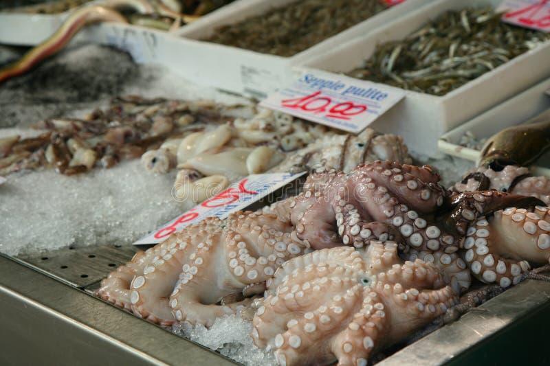 Alimento de mar imagen de archivo