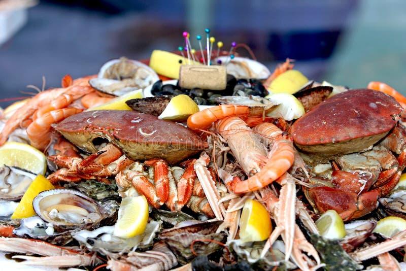 Alimento de mar fotos de stock royalty free