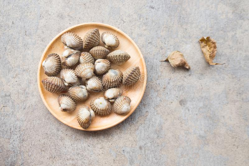 Alimento de mar cru fresco do shell do berbigão no prato de madeira foto de stock
