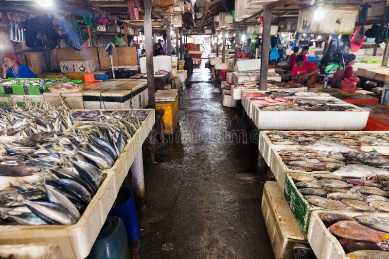 Alimento de mar fresco do marisco imagem de stock royalty free