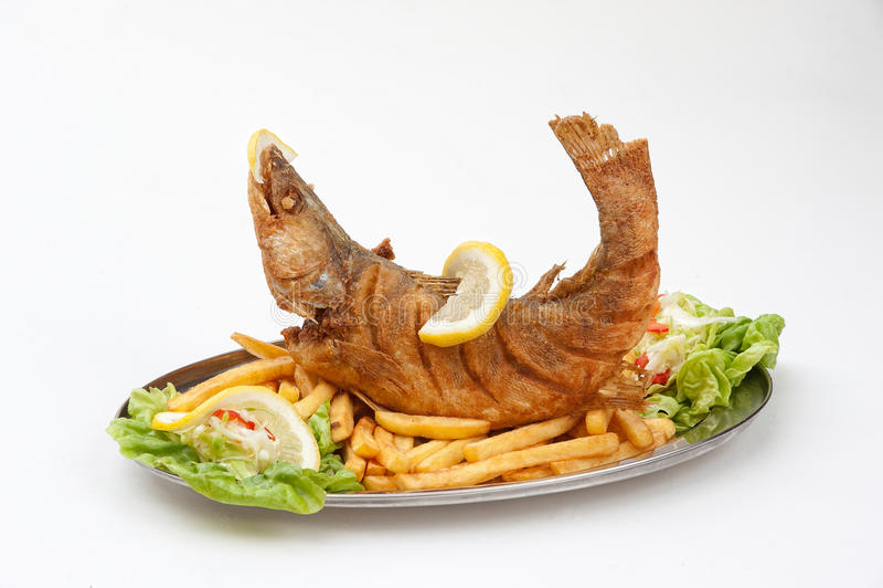 Alimento de peixes foto de stock