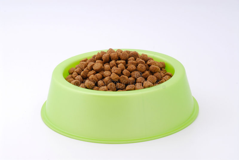 Alimento de perro en el tazón de fuente imagen de archivo