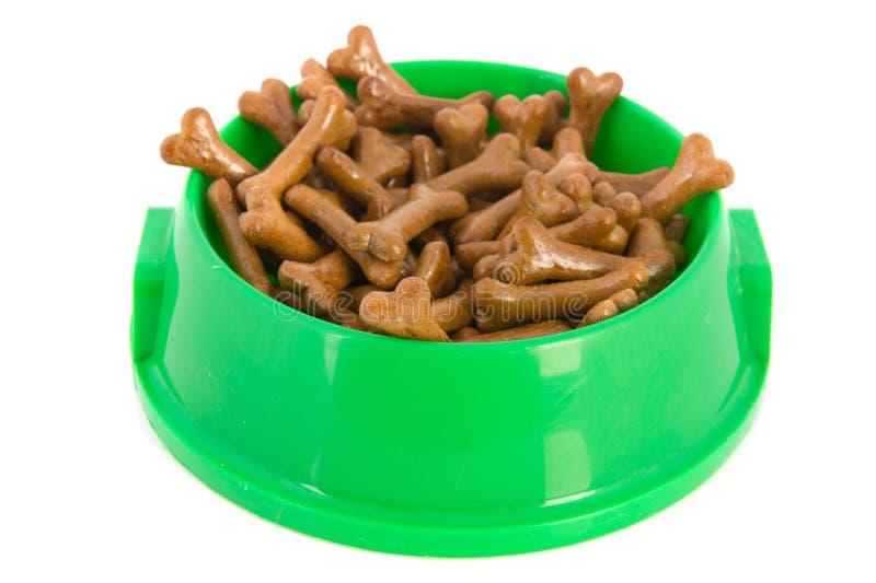 Alimento de perro verde de la bandeja fotografía de archivo libre de regalías
