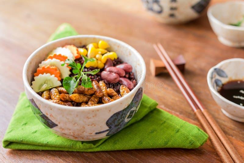 Alimento degli insetti con la bacca del riso immagine stock