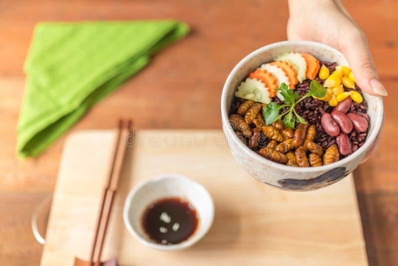 Alimento degli insetti con la bacca del riso immagine stock libera da diritti