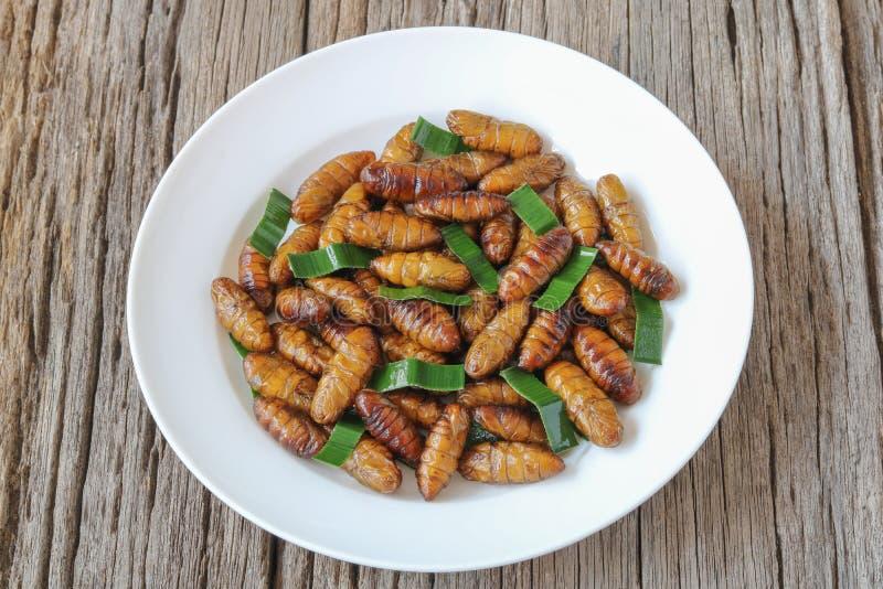 Alimento degli insetti Pupe fritte del baco da seta con pandan immagine stock libera da diritti