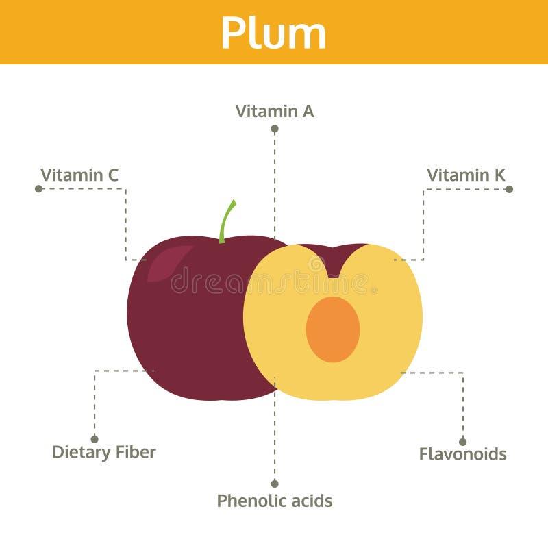 Alimento del ciruelo de hechos y de subsidios por enfermedad, fruta del gráfico de la información stock de ilustración