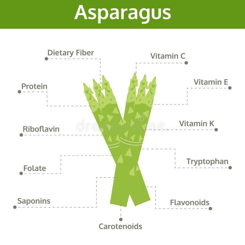 Alimento del espárrago de hechos y de subsidios por enfermedad, gráfico de la información ilustración del vector