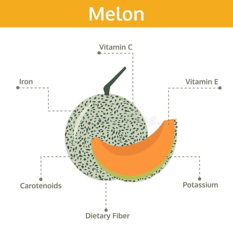 Alimento del melón de hechos y de subsidios por enfermedad, fruta del gráfico de la información ilustración del vector