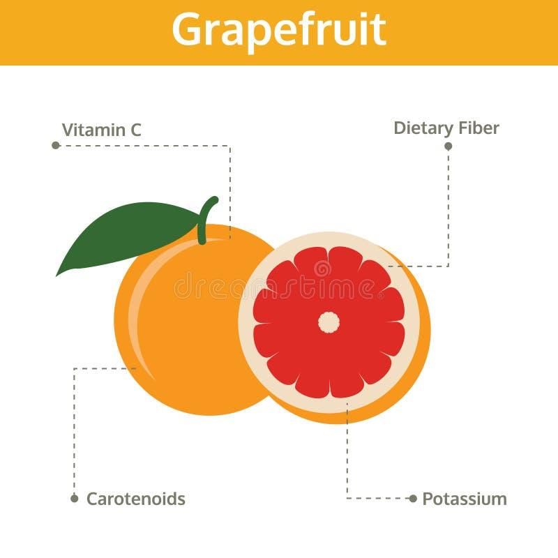 Alimento del pomelo de hechos y de subsidios por enfermedad, gráfico de la información ilustración del vector