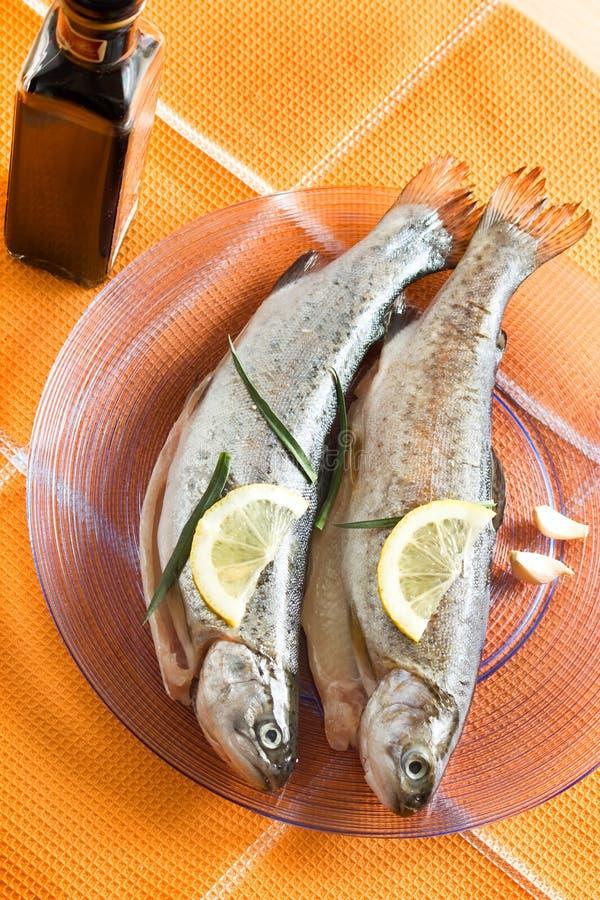 Alimento del restaurante de los pescados de la trucha foto de archivo