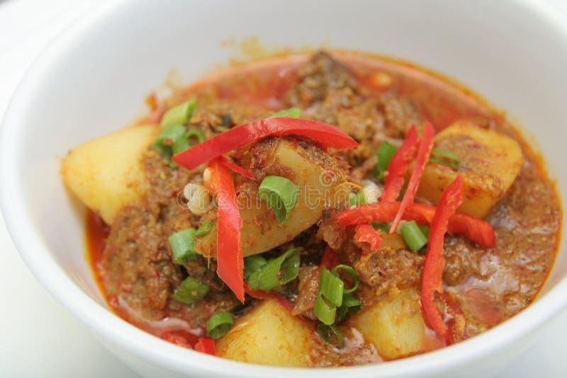 Alimento dell'Asia del curry della patata fotografia stock libera da diritti