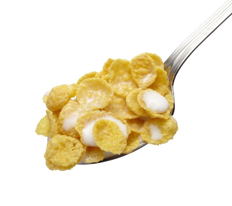 Alimento di muesli dei cereali dei fiocchi di avena immagine stock