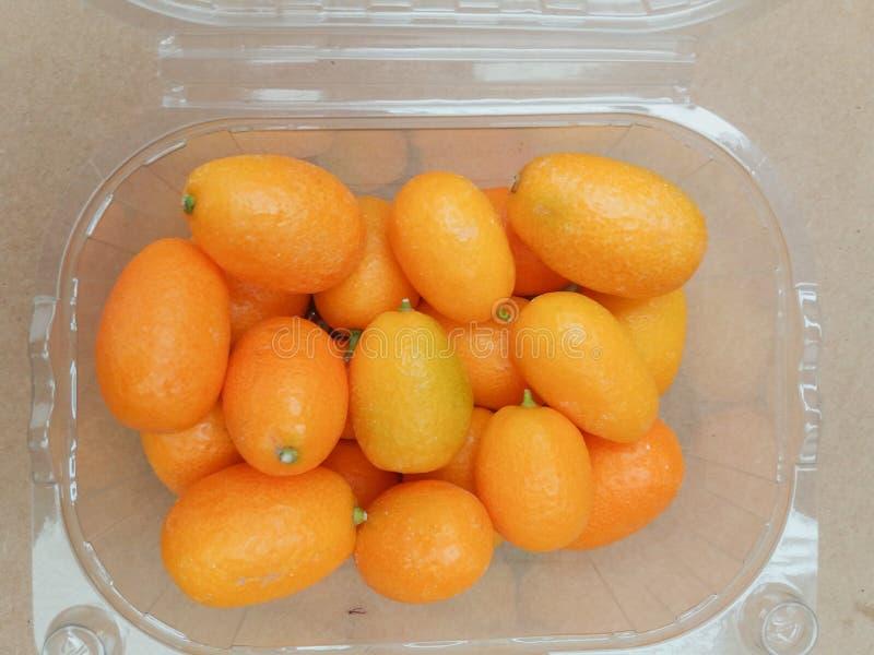 Alimento do fruto do Kumquat foto de stock