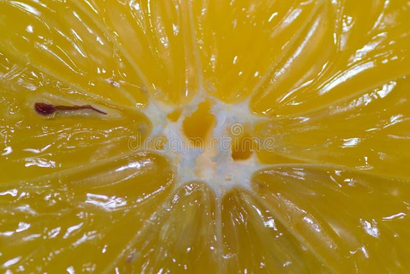 Alimento do limão mim fotos de stock