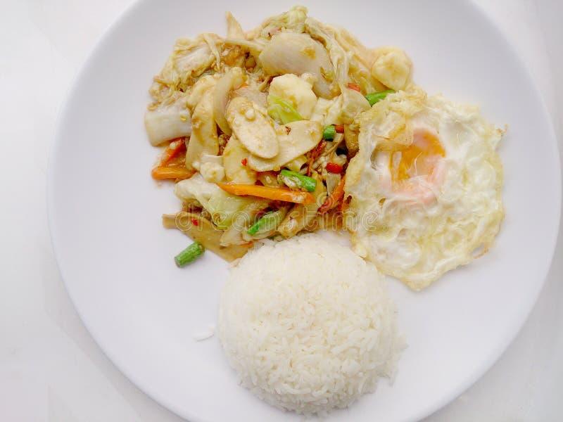 Alimento do vegetariano com Fried Vegetables e o Tofu no prato branco, alimento saudável fotografia de stock royalty free