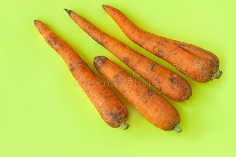 Alimento feio Cenouras orgânicas deformadas no fundo amarelo pastel Cores brilhantes, espa?o da c?pia imagem de stock royalty free