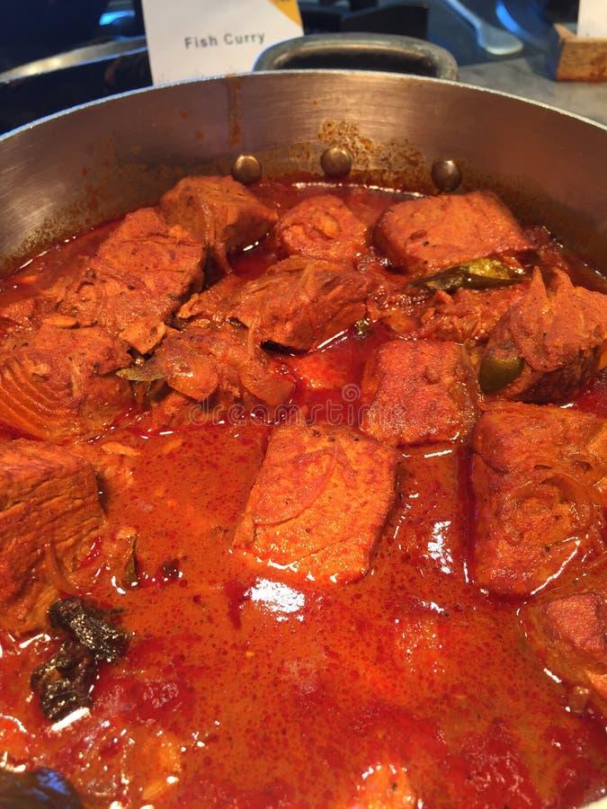 Alimento indiano - curry piccante del pesce fotografia stock libera da diritti