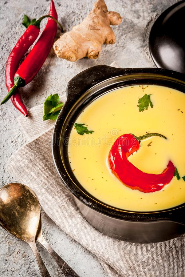 Alimento indiano, Kadhi gujarati immagini stock libere da diritti