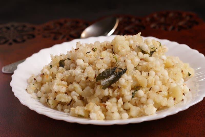 Alimento indiano per i giorni di digiuno immagini stock libere da diritti
