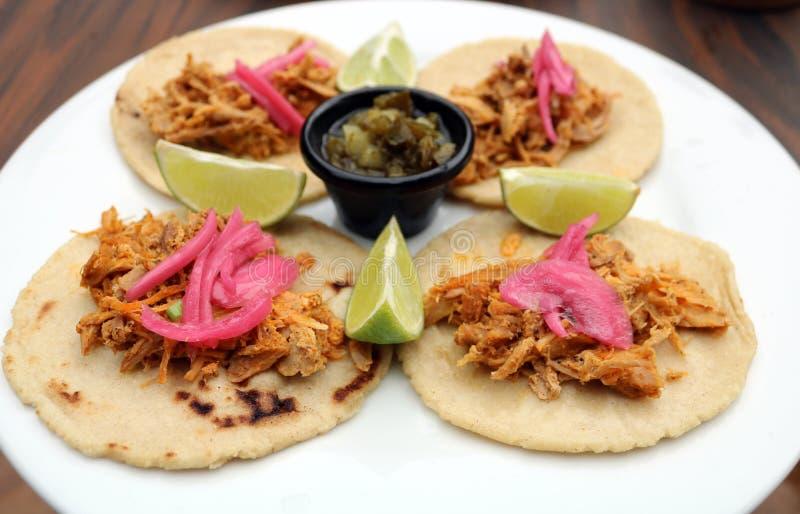 Alimento latino-americano puxado do mexicano dos tacos da carne de porco foto de stock