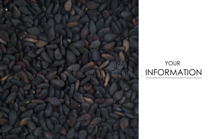 Alimento macro da especiaria do cominhos preto foto de stock royalty free