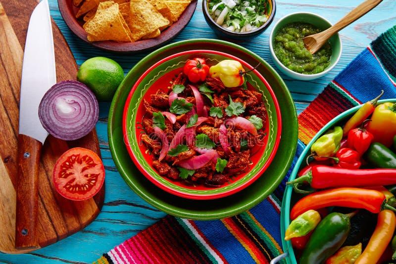 Alimento mexicano de Cochinita Pibil com cebola vermelha imagem de stock royalty free