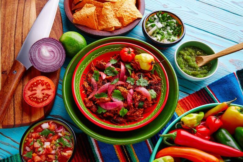 Alimento mexicano de Cochinita Pibil com cebola vermelha fotografia de stock