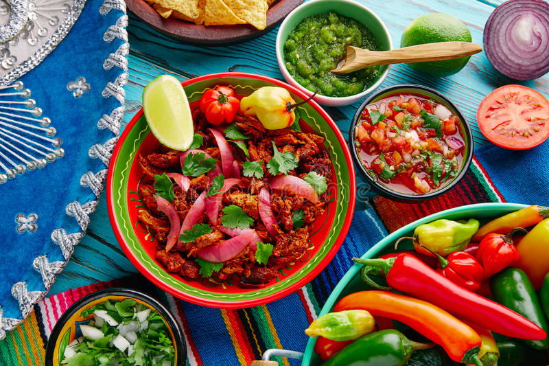 Alimento mexicano de Cochinita Pibil com cebola vermelha fotografia de stock royalty free