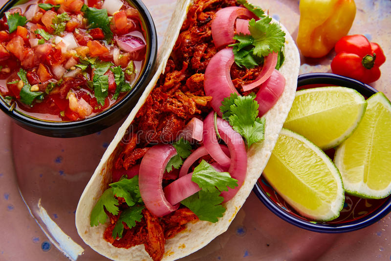 Alimento mexicano de Cochinita Pibil com pico de Gallo imagens de stock